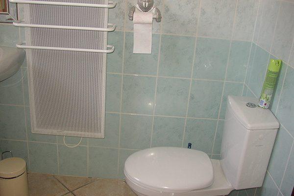 Sèche-serviettes et WC